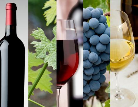 Wine Info Bremers
