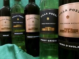Villa Pozzi Tasting @ Bremer's Wine and Liquor | New Hartford | New York | United States