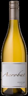 Acrobat Pinot Gris 2016